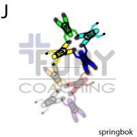 J-Springbok-Bipole