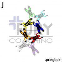 J-Springbok-Centers