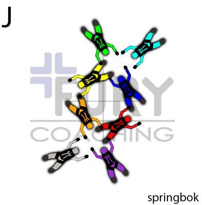 J-Springbok-setup