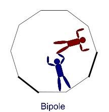 bipole