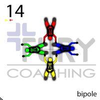 14-BipoleTop copy